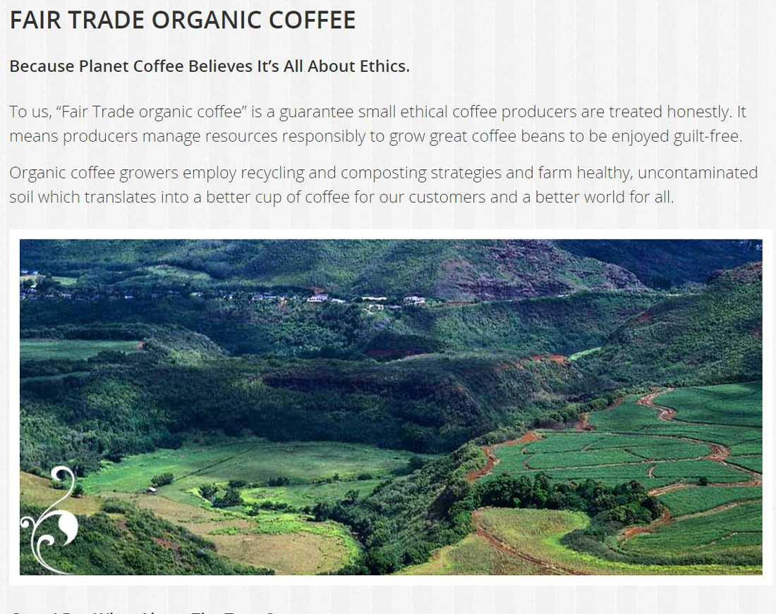 "A verdant valley in bean-growing country is the image Edmonton web designer INM used to highlight Planet Coffee's use of"" Fair Trade"" organic coffee"